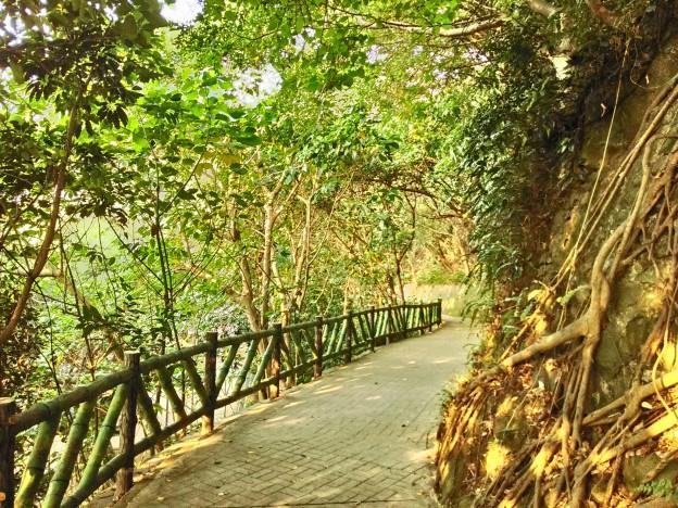 天母公園3