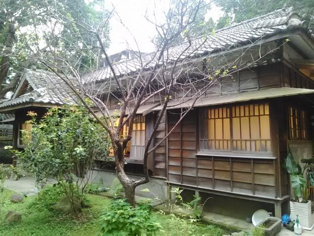 青田茶館・敦煌畫廊